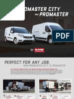 promaster