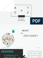 PPT-Pedigree