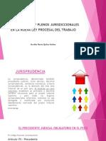 JURISPRUDENCIA Y PLENOS  SUPREMOS - PUNO