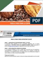 PASO A PASO PARA EXPORTAR CACAO (1).pdf