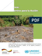 Bosque_y_Coca_un_camino_para_la_accion.pdf