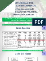 2.2 El Hierro en El Cultivo Del Cacao.