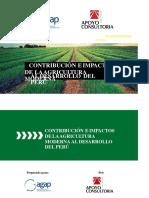 335285704-CONTRIBUCION-E-IMPACTOS-DE-LA-AGRICULTURA-MODERNA-AL-DESARROLLO-DEL-PERU (1).pptx
