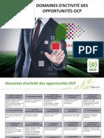 Domaines d_activité des opportunités OCP