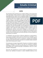 18. ADN II.pdf