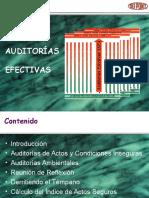 PRESENTACIÓN - AUDITORIAS EFECTIVAS.ppt