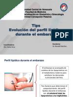 Evolucion Perfil Lipidico