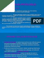 SOCIJALNA PATOLOGIJA-NIS