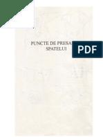 presopunctura 2
