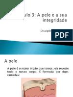 diapositivos_a pele