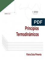 Princípios Termodinâmicos -Flávia Duta.pdf