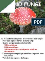 Reino Fungi (1)