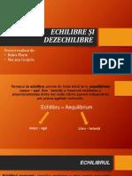 Proiect ech și dez^.pptx