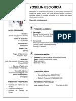 Mi Curriculum Vitae.docx