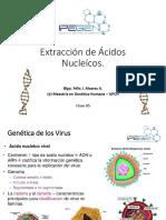 Extraccion de Acidos Nucleicos