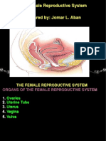 9. The Female Reproductive System (simplified).ppt