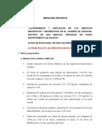 Descripcion de Metas Alt. 01.doc