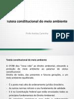 A Constituicao Federal e o Meio Ambiente Competencia Ambiental Da Uniao Dos Estados e Dos Municipios Bens Ambientais
