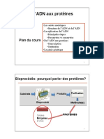 ADN-protéines-aut2018-diapos