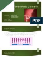 Desarrollo embrionario 2MA.pptx