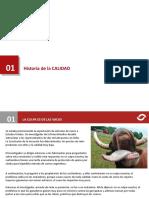 02. Historia de la Calidad.pptx
