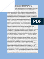 INFORME DESCRIPTIVO.docx