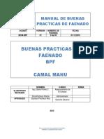 BPF MANU.docx