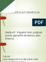 GENETALIA.pptx