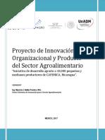 Resumen Proyecto Innov
