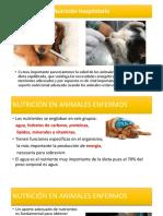 Nutrición animales enfermos