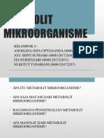 METABOLIT MIKROORGANISME KLP. 4.pptx