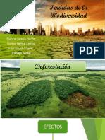 Perdidas de la Biodiversidad.pptx