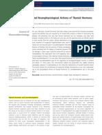 tiroides neurodesarrollo