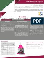10679_Betterave-final.pdf