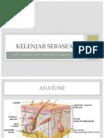 KELENJAR SEBASEA dr reti.pptx