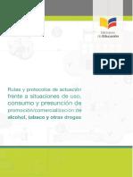 295509743-rutayprotocoloOctubreAF06-2.docx