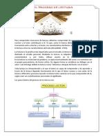 PROCESO DE LECTURA.docx