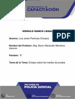 ENSAYO MEDIOS DE PRUEBA.docx
