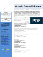 Copia de CURRICULUM  ORLANDO GUERRA MALACARA.docx