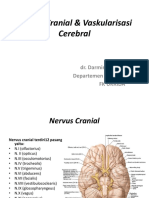 Nervus Cranial & Vaskularisasi Cerebral.pptx