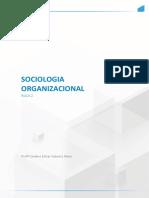 Sociologia ORGANIZACIONAL AULA 2