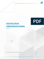 Sociologia ORGANIZACIONAL AULA 3