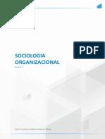 Sociologia ORGANIZACIONAL AULA 4