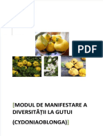 fdocuments.net_diversitatea-genetica-a-gutuiului-galani-neculai-daniela
