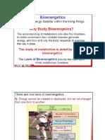 Bioenergetics.ppt