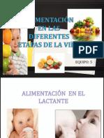 ALIMENTACION EN LAS DIFERENTES ETAPAS.pptx