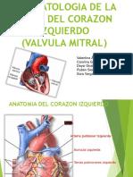 FISIOPATOLOGIA DE LA FALLA DEL CORAZON IZQUIERDO ( (1).pptx