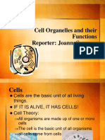 Cell_structure.ppt