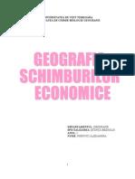GEOGRAFIA SCHIMBURILOR ECONOMICE