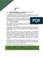 TRABAJO - RECURSOS HIDRAULICOS CUENCA DEL RIO HUANCANE - V1.0.docx